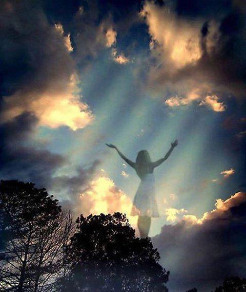 Les voix du seigneur…